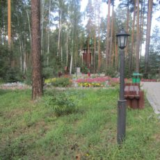 Симатова Н. (Челябинск) 10