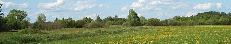 Лотошинский р-н1